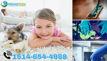 DOMESTIC CLEANING SERVICES MONTREAL