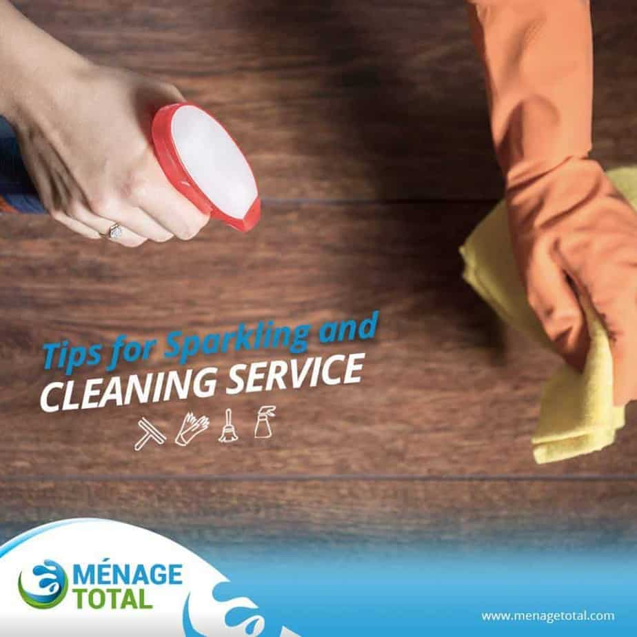 Keeping Your House Spotless