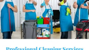 Cleaning Lady Montreal