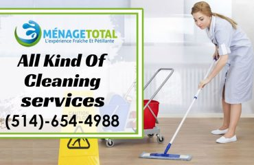 Clean your Home Professionally