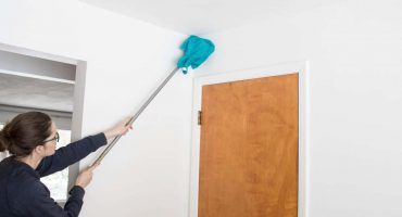Wall Cleaning Services
