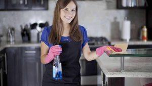 Big Clean Service