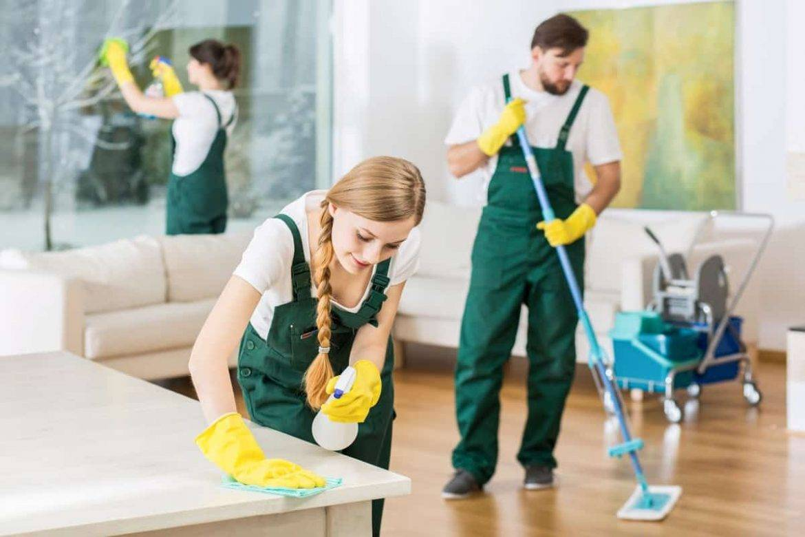 Housekeeper Services for Your Living Room