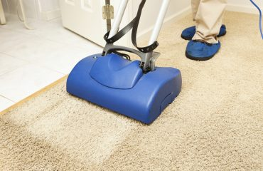 Organic Carpet Cleaning Services