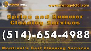 Menage Total Summer Cleaning Service