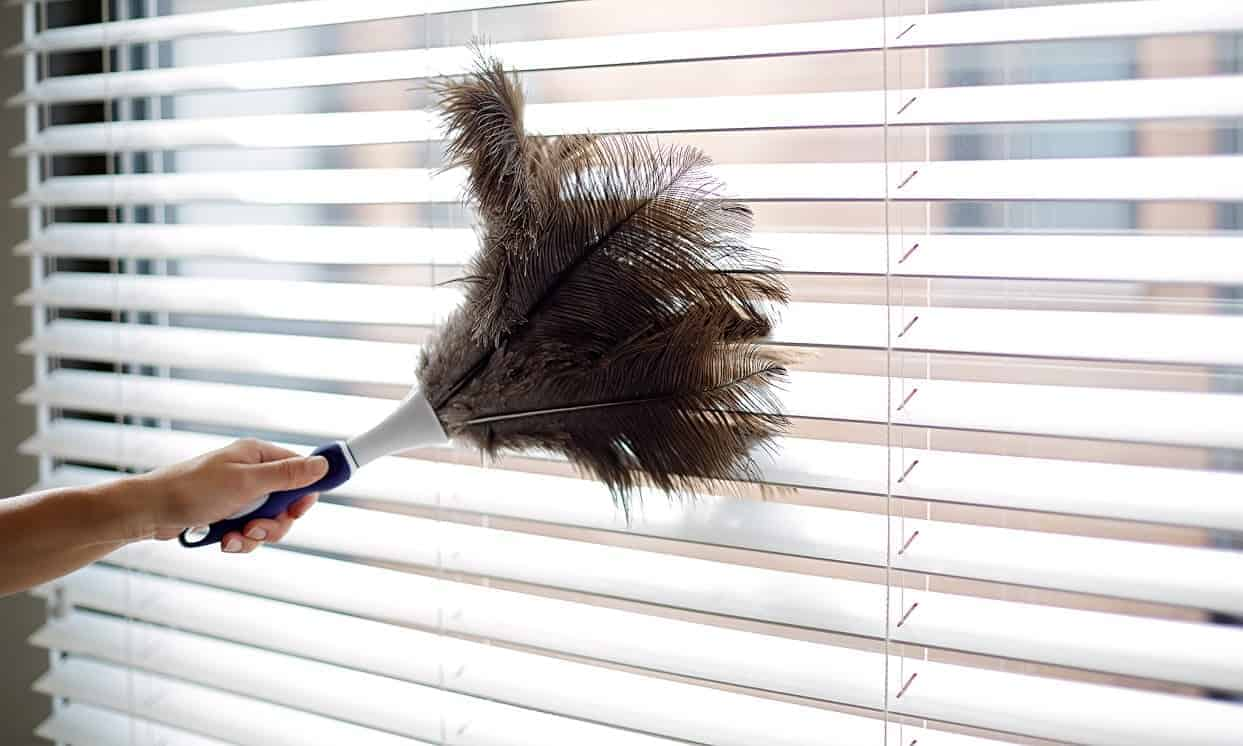 Dust Cleaning Services