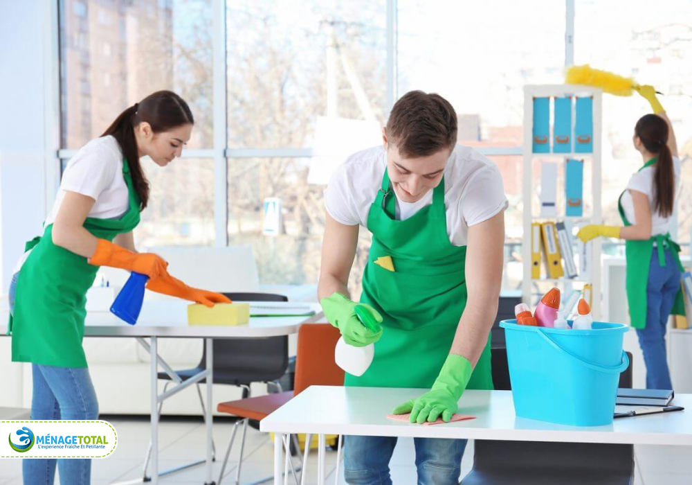 Duties of Lady Cleaning Montreal