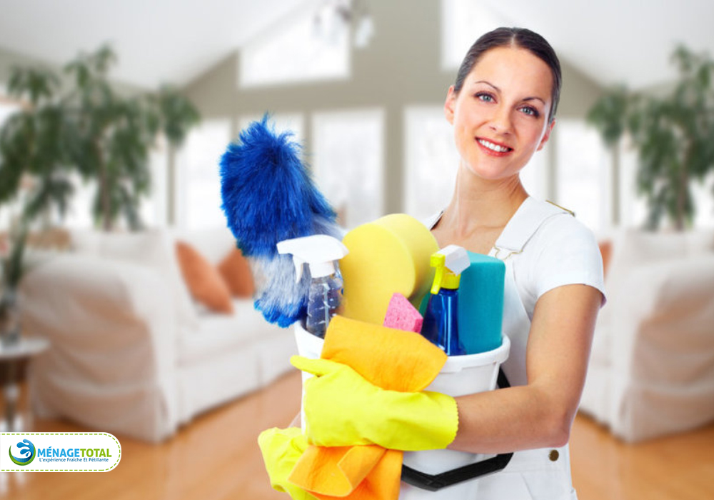 House Cleaning Lady