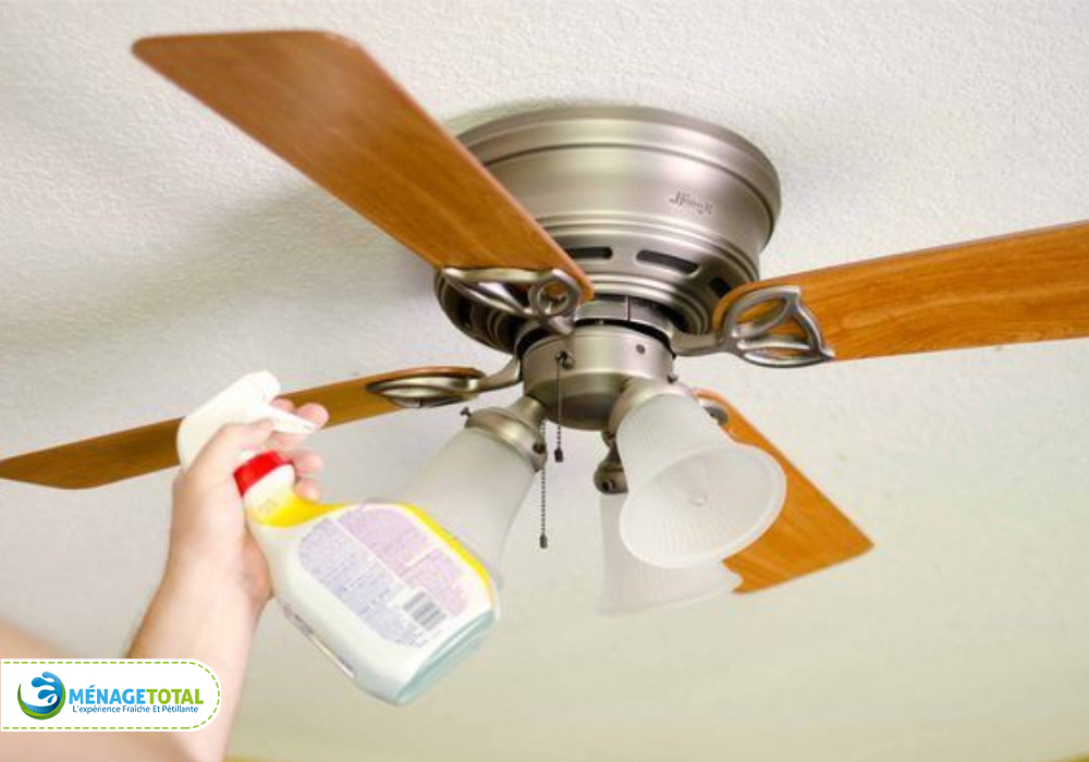 Dusting Ceiling fans Living Room Cleaning